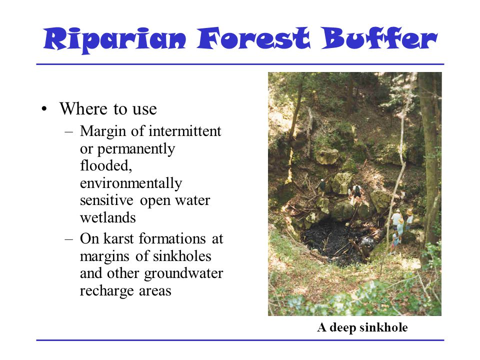 Riparian Forest Buffer Where to use –Margin of intermittent or permanently flooded, environmentally sensitive open water wetlands –On karst formations at margins of sinkholes and other groundwater recharge areas A deep sinkhole