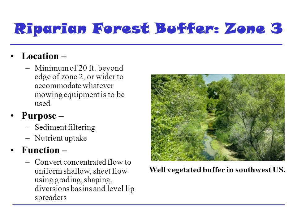 Riparian Forest Buffer: Zone 3 Location – –Minimum of 20 ft.
