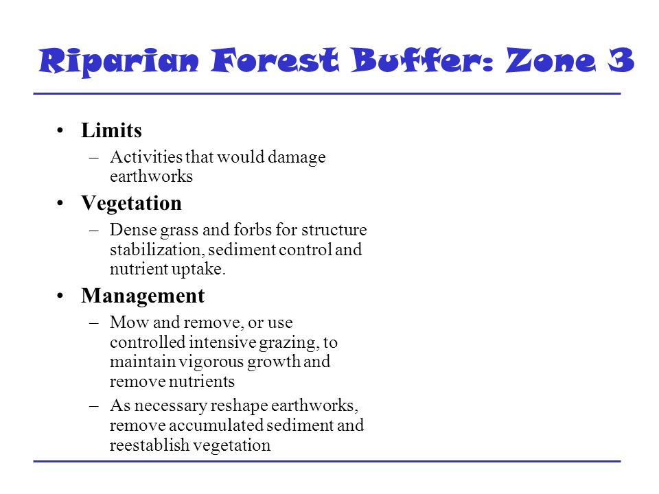 Riparian Forest Buffer: Zone 3 Limits –Activities that would damage earthworks Vegetation –Dense grass and forbs for structure stabilization, sediment control and nutrient uptake.