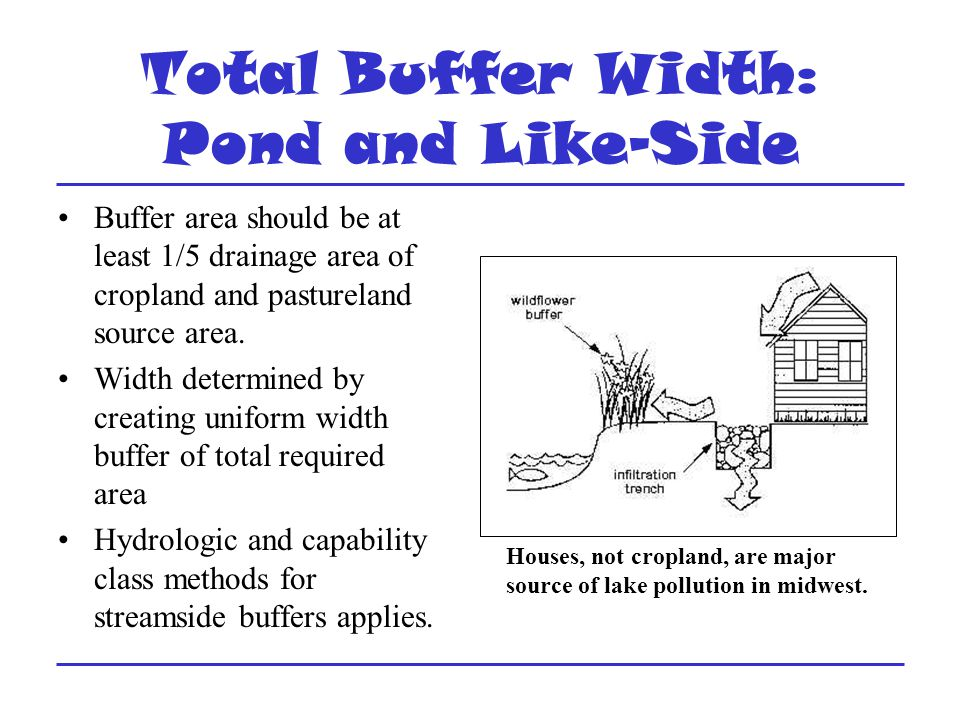 Total Buffer Width: Pond and Like-Side Buffer area should be at least 1/5 drainage area of cropland and pastureland source area.