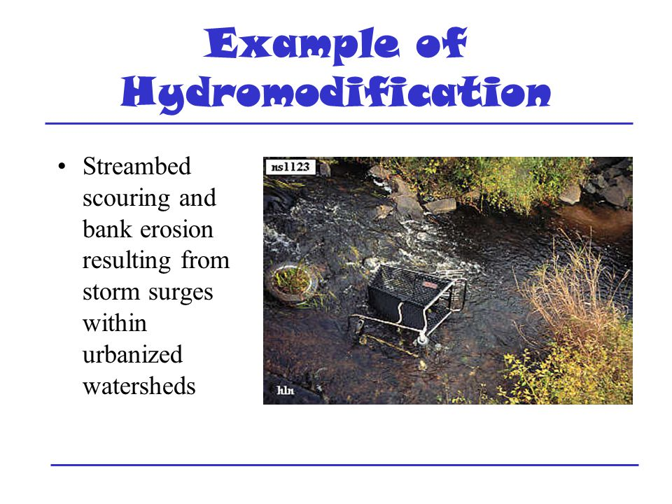 Example of Hydromodification Streambed scouring and bank erosion resulting from storm surges within urbanized watersheds