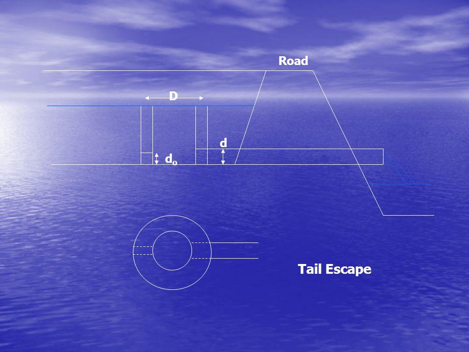 D dodo d Road Tail Escape