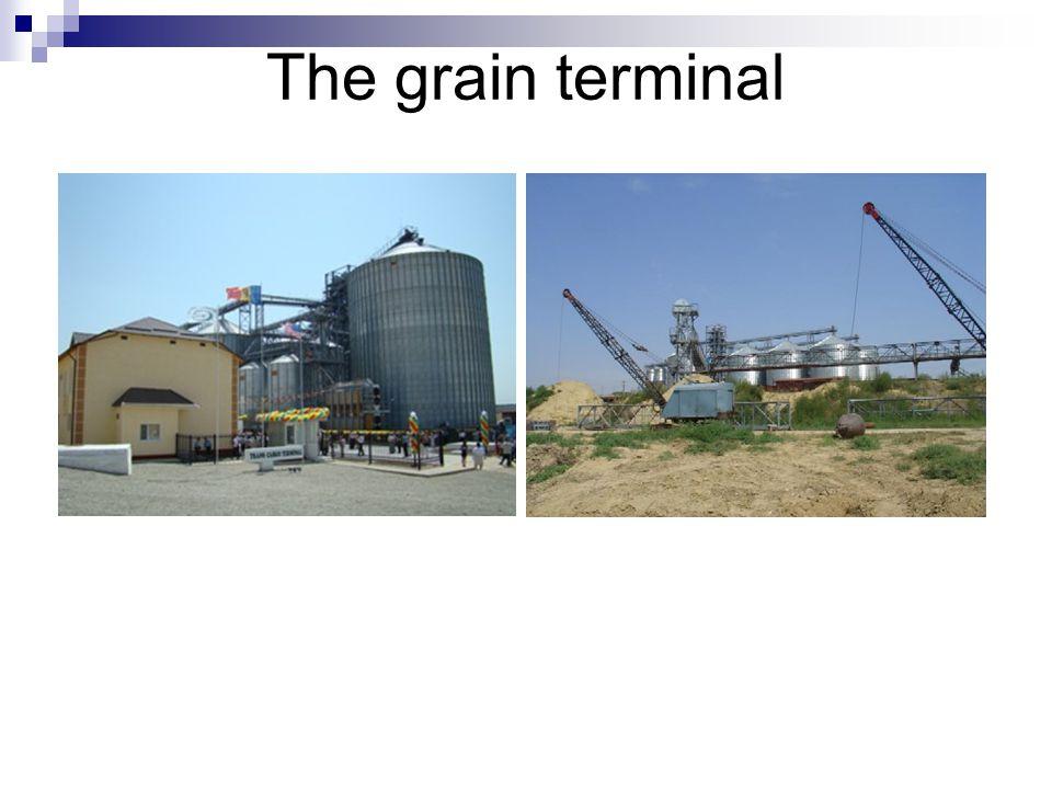 The grain terminal