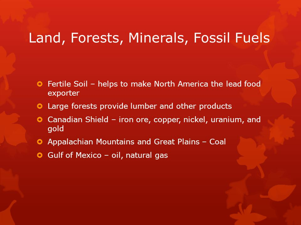 Land, Forests, Minerals, Fossil Fuels  Fertile Soil – helps to make North America the lead food exporter  Large forests provide lumber and other pro