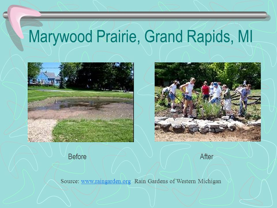 Source: www.raingarden.org Rain Gardens of Western Michiganwww.raingarden.org Marywood Prairie, Grand Rapids, MI BeforeAfter