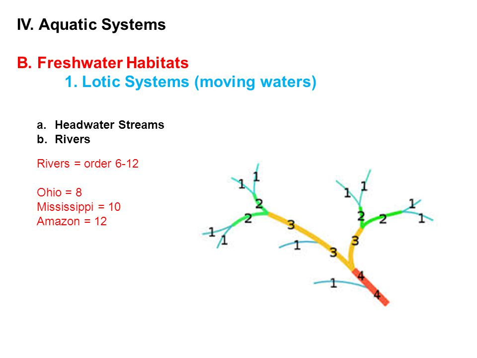 IV. Aquatic Systems B. Freshwater Habitats 1. Lotic Systems (moving waters) a.Headwater Streams b.Rivers Rivers = order 6-12 Ohio = 8 Mississippi = 10