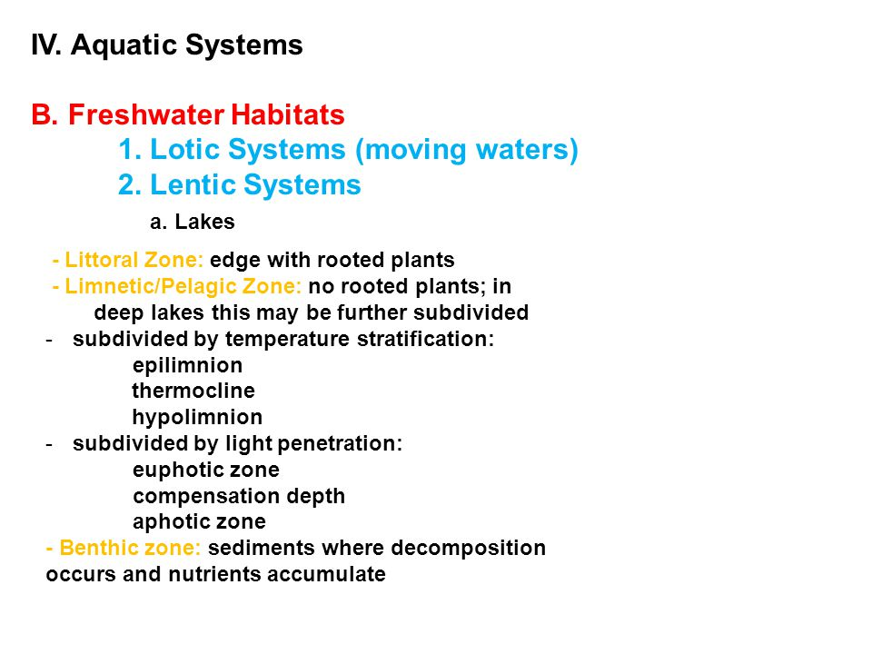IV. Aquatic Systems B. Freshwater Habitats 1. Lotic Systems (moving waters) 2. Lentic Systems a. Lakes - Littoral Zone: edge with rooted plants - Limn