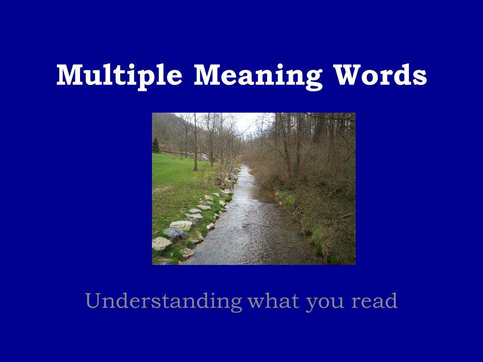Multiple Meaning Words Understanding what you read