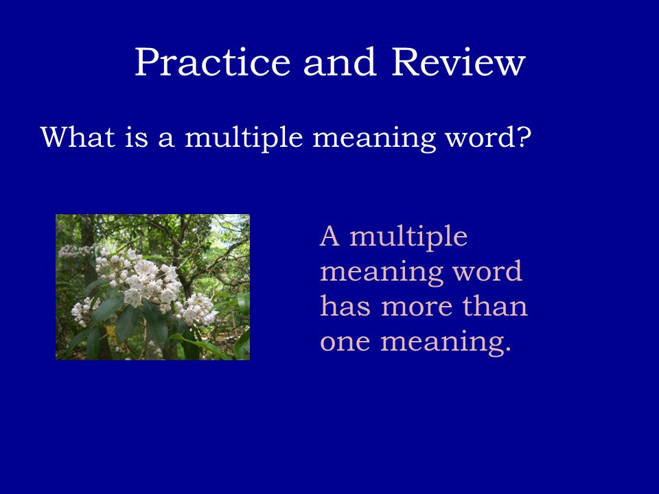 Practice and Review What is a multiple meaning word? A multiple meaning word has more than one meaning.