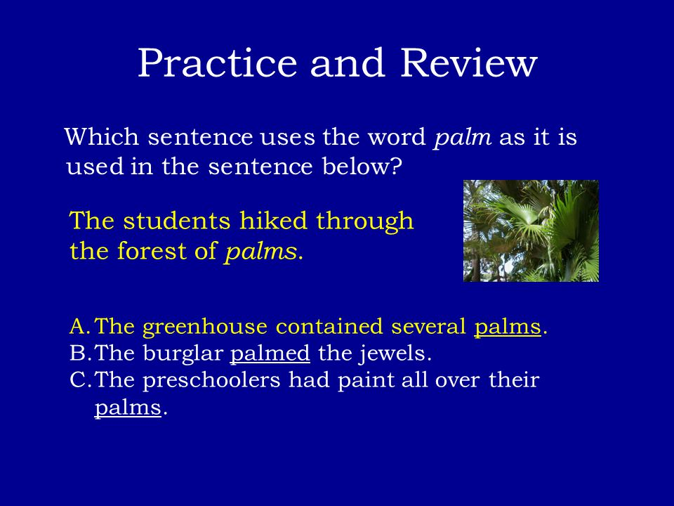 Practice and Review Which sentence uses the word palm as it is used in the sentence below? The students hiked through the forest of palms. A.The green