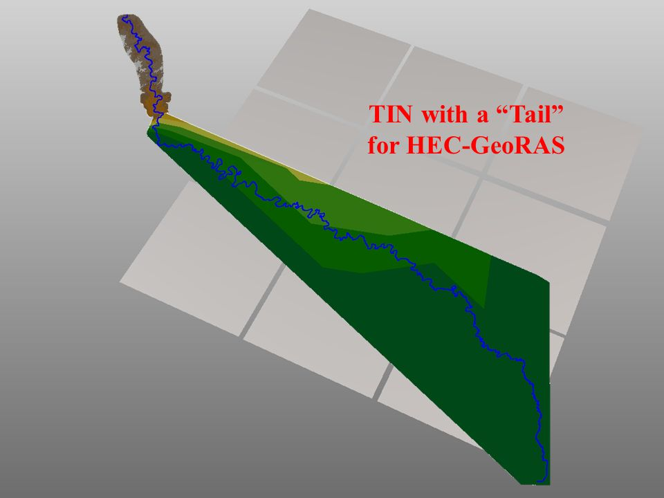 """TIN with a """"Tail"""" for HEC-GeoRAS"""