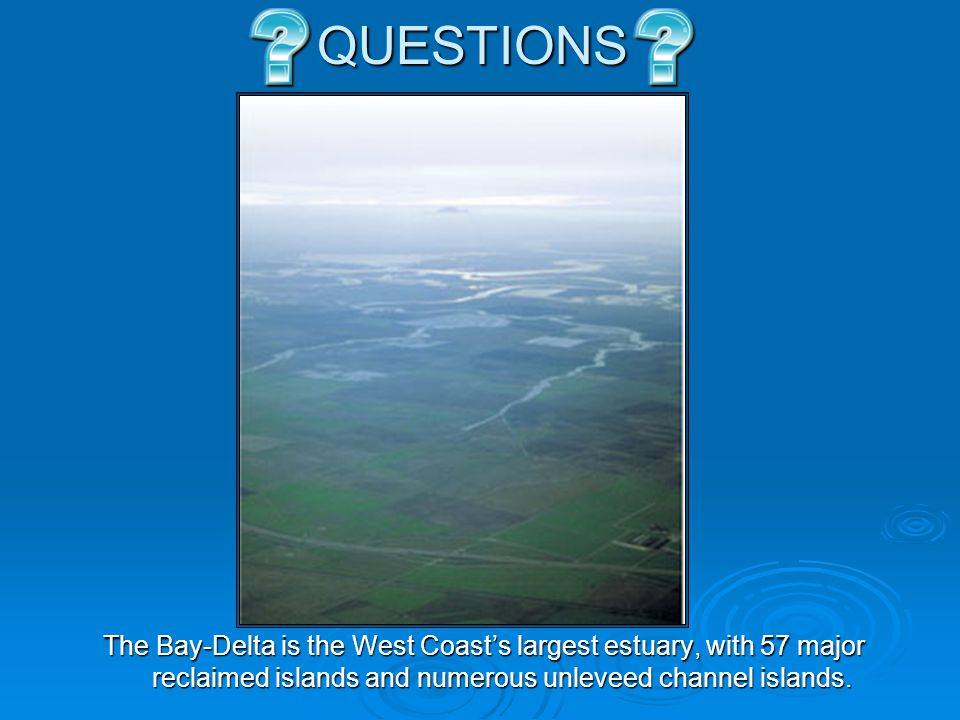 QUESTIONS The Bay-Delta is the West Coast's largest estuary, with 57 major reclaimed islands and numerous unleveed channel islands.