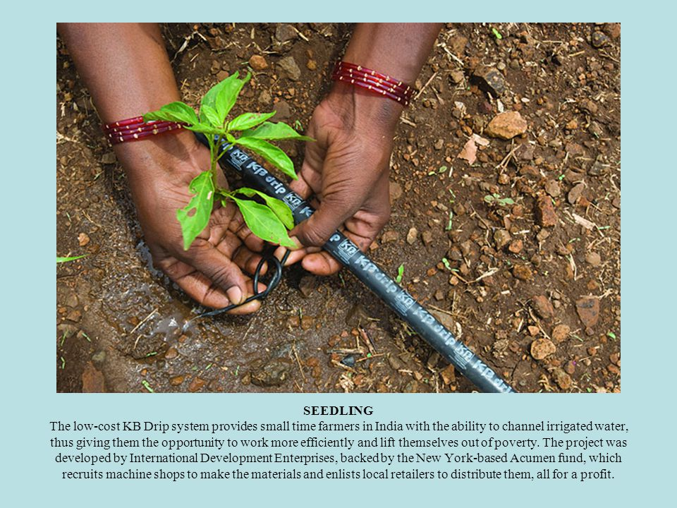 SEEDLING The low-cost KB Drip system provides small time farmers in India with the ability to channel irrigated water, thus giving them the opportunity to work more efficiently and lift themselves out of poverty.