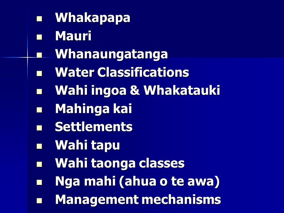 Whakapapa Whakapapa Mauri Mauri Whanaungatanga Whanaungatanga Water Classifications Water Classifications Wahi ingoa & Whakatauki Wahi ingoa & Whakatauki Mahinga kai Mahinga kai Settlements Settlements Wahi tapu Wahi tapu Wahi taonga classes Wahi taonga classes Nga mahi (ahua o te awa) Nga mahi (ahua o te awa) Management mechanisms Management mechanisms