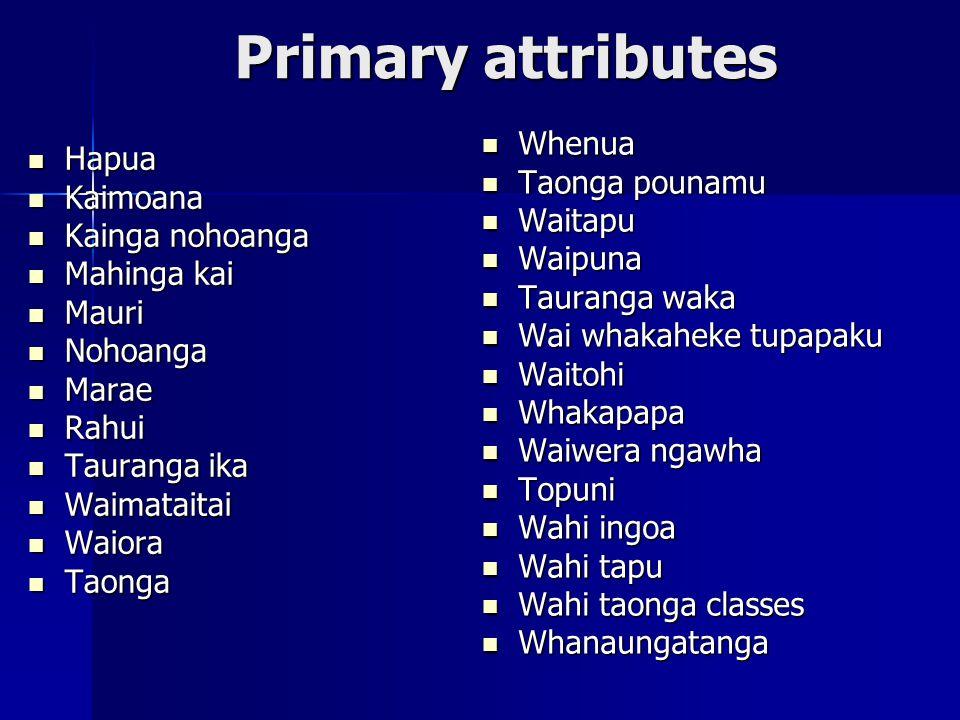 Primary attributes Hapua Hapua Kaimoana Kaimoana Kainga nohoanga Kainga nohoanga Mahinga kai Mahinga kai Mauri Mauri Nohoanga Nohoanga Marae Marae Rahui Rahui Tauranga ika Tauranga ika Waimataitai Waimataitai Waiora Waiora Taonga Taonga Whenua Whenua Taonga pounamu Taonga pounamu Waitapu Waitapu Waipuna Waipuna Tauranga waka Tauranga waka Wai whakaheke tupapaku Wai whakaheke tupapaku Waitohi Waitohi Whakapapa Whakapapa Waiwera ngawha Waiwera ngawha Topuni Topuni Wahi ingoa Wahi ingoa Wahi tapu Wahi tapu Wahi taonga classes Wahi taonga classes Whanaungatanga Whanaungatanga