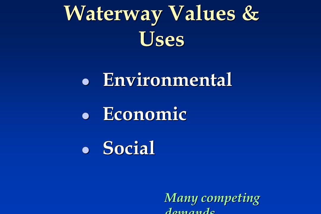 Economic & Social Values l Water supply — drinking & domestic (e.g.
