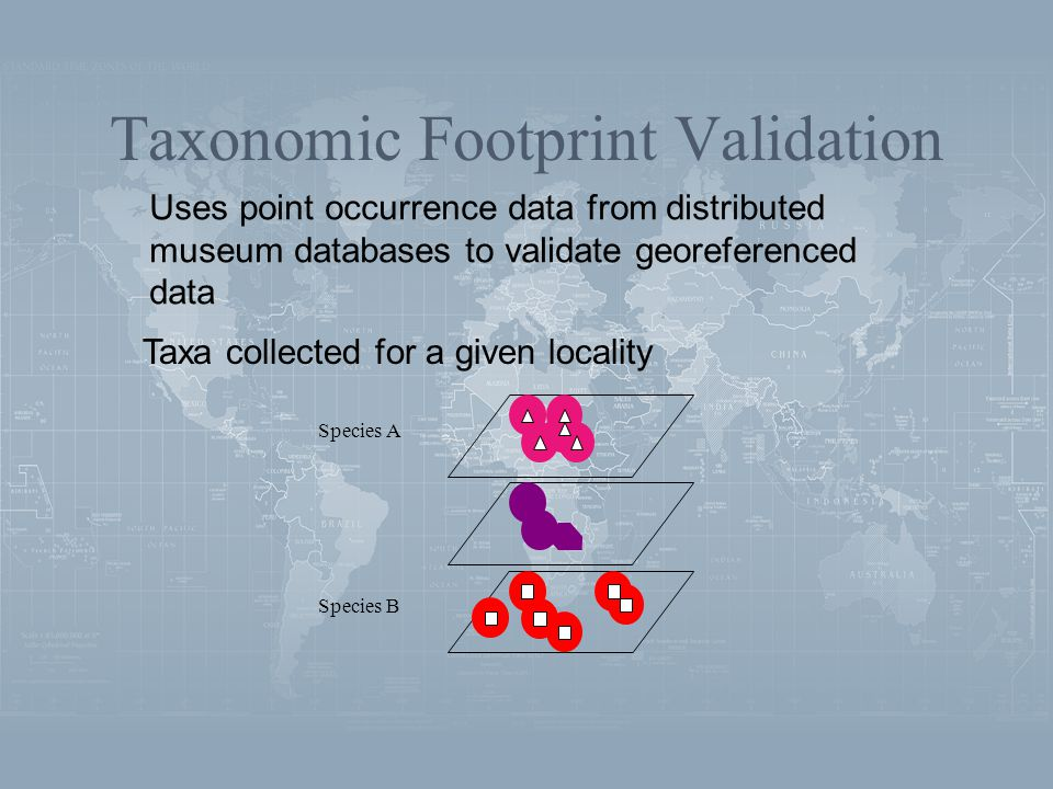 Taxonomic Footprint Validation Taxa collected for a given locality Uses point occurrence data from distributed museum databases to validate georeferenced data Species A Species B