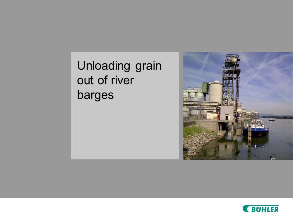 Unloading grain out of river barges