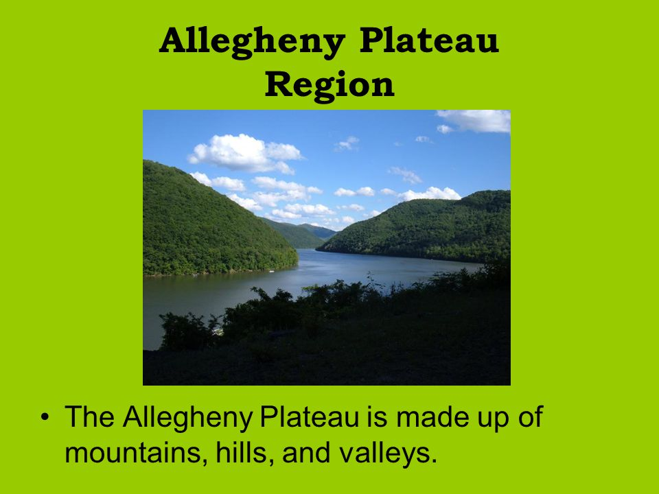 Allegheny Plateau Region The Allegheny Plateau is made up of mountains, hills, and valleys.