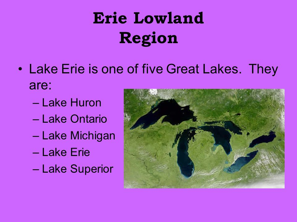 Erie Lowland Region Lake Erie is one of five Great Lakes. They are: –Lake Huron –Lake Ontario –Lake Michigan –Lake Erie –Lake Superior