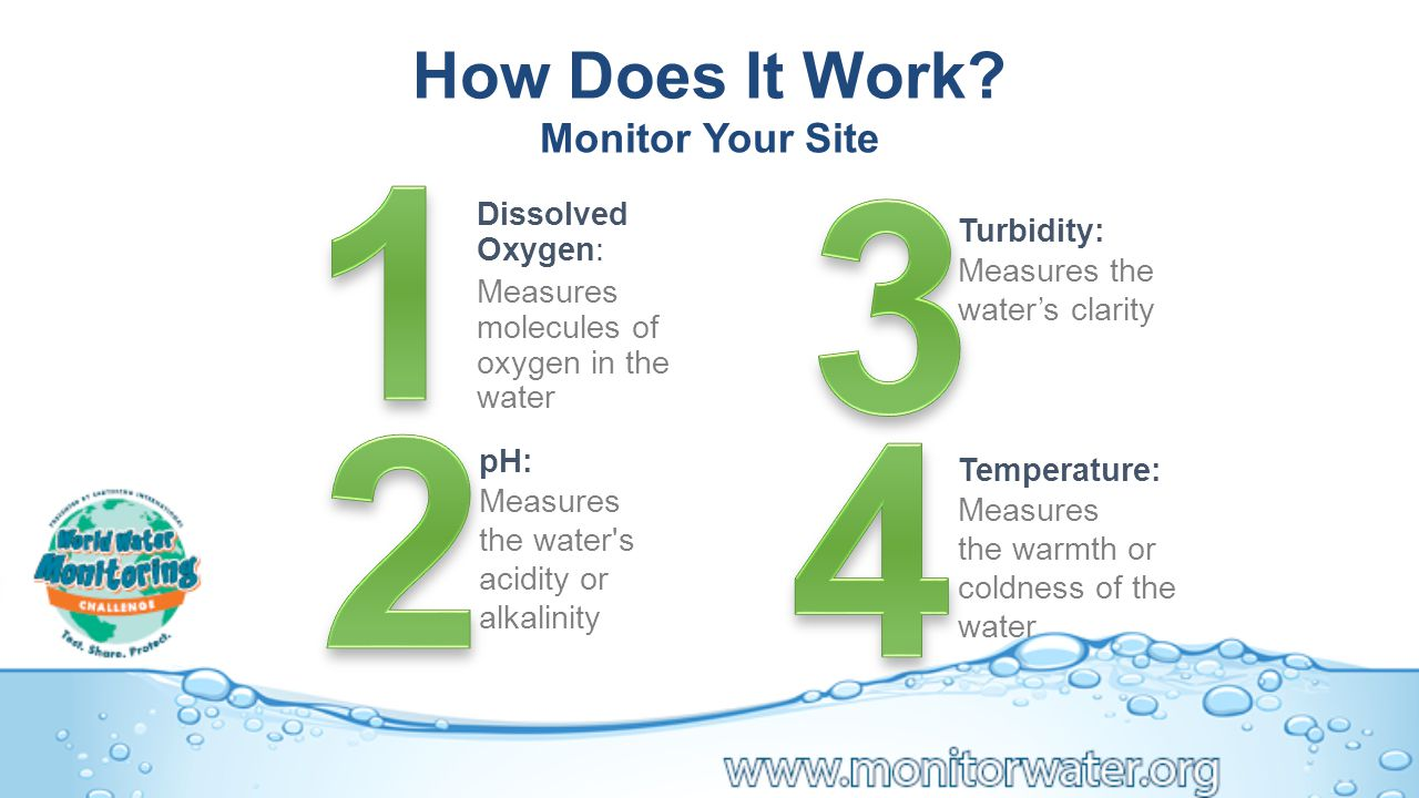 pH: Measures the water s acidity or alkalinity Turbidity: Measures the water's clarity Temperature: Measures the warmth or coldness of the water Dissolved Oxygen: Measures molecules of oxygen in the water How Does It Work.