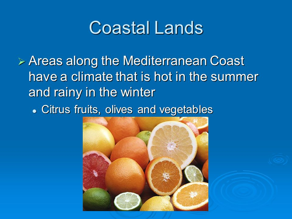 Coastal Lands  Areas along the Mediterranean Coast have a climate that is hot in the summer and rainy in the winter Citrus fruits, olives and vegetables Citrus fruits, olives and vegetables