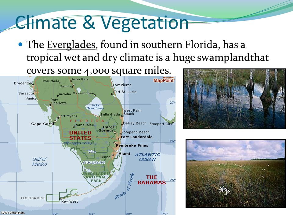 Climate & Vegetation The Everglades, found in southern Florida, has a tropical wet and dry climate is a huge swamplandthat covers some 4,000 square mi