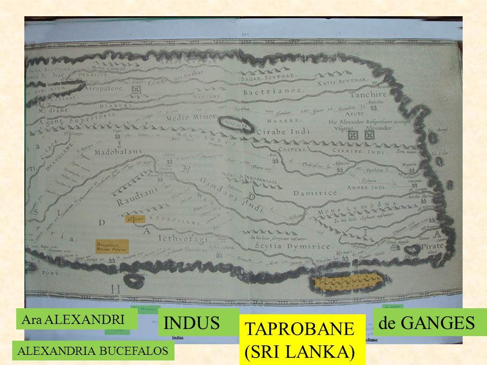 INDUS TAPROBANE (SRI LANKA) de GANGES Ara ALEXANDRI ALEXANDRIA BUCEFALOS