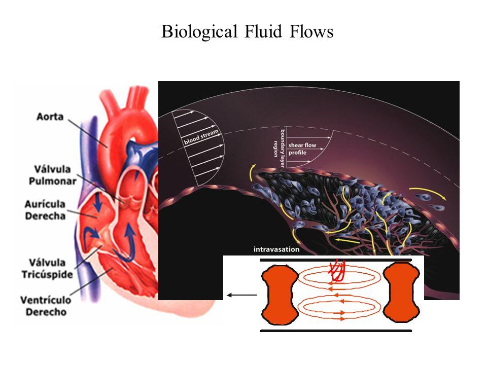 Weather & Fluid Flows