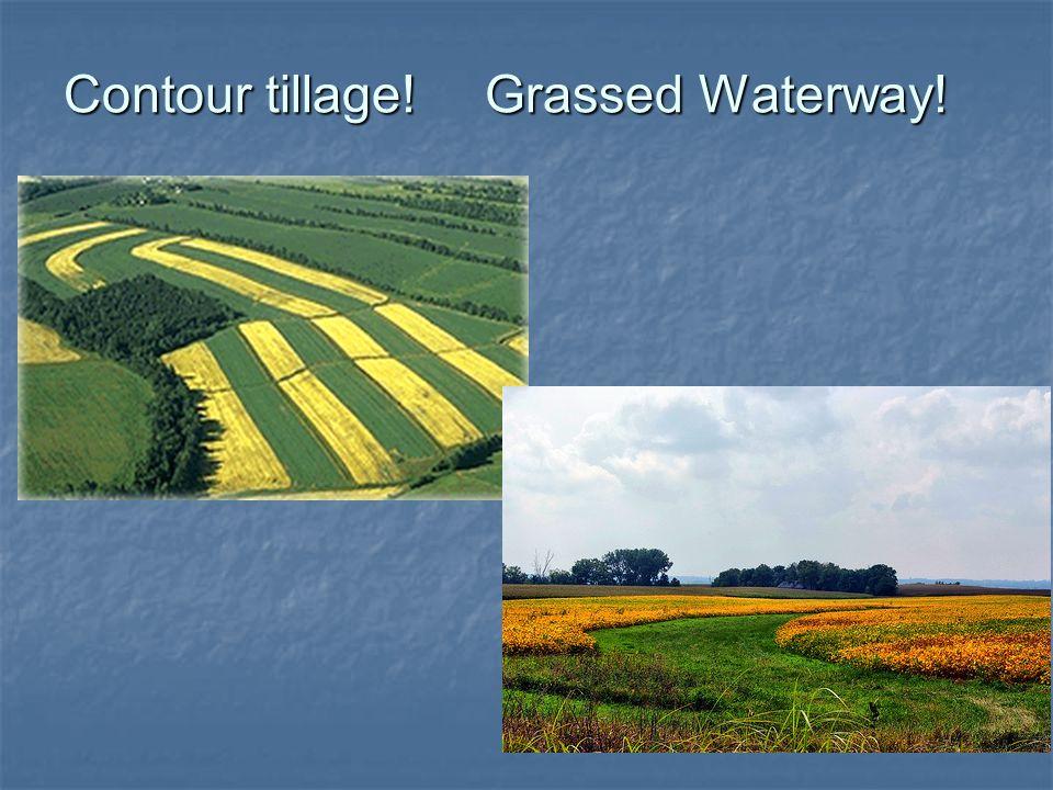 Contour tillage!Grassed Waterway!