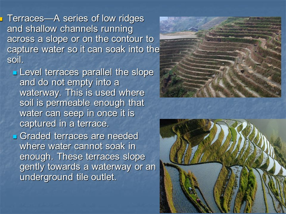 Terraces—A series of low ridges and shallow channels running across a slope or on the contour to capture water so it can soak into the soil. Terraces—