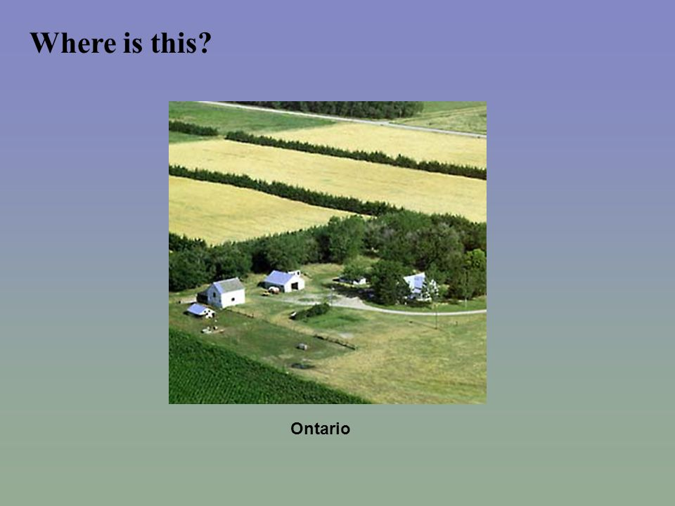 Scattered Settlement Settlement within other areas of Canada based on two main reasons.