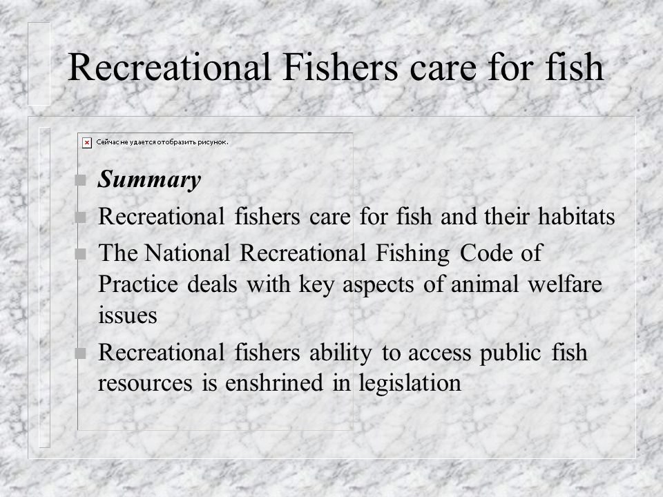 Recreational Fishers care for fish n Summary n Recreational fishers care for fish and their habitats n The National Recreational Fishing Code of Practice deals with key aspects of animal welfare issues n Recreational fishers ability to access public fish resources is enshrined in legislation