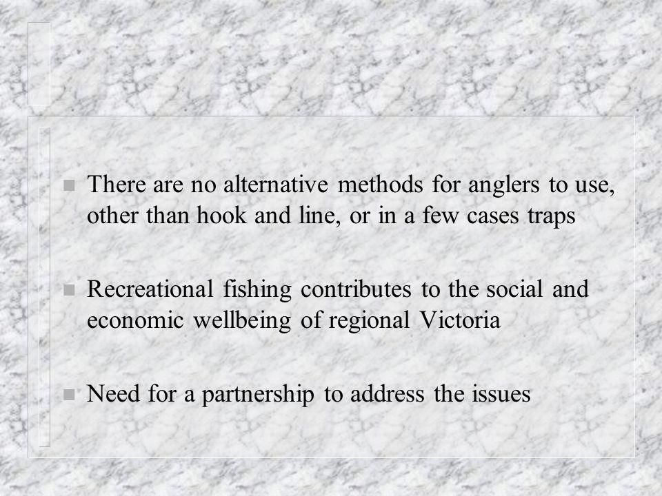 n VRFish Contacts n Ray Page n 9412 5164 n info@vrfish.com.au n www.vrfish.com.au