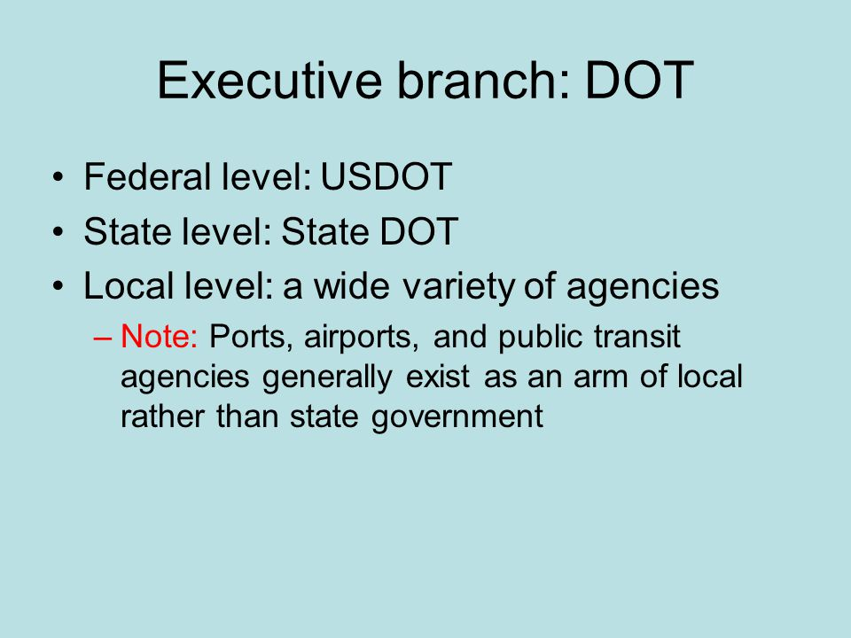 Executive branch: DOT Federal level: USDOT State level: State DOT Local level: a wide variety of agencies –Note: Ports, airports, and public transit agencies generally exist as an arm of local rather than state government