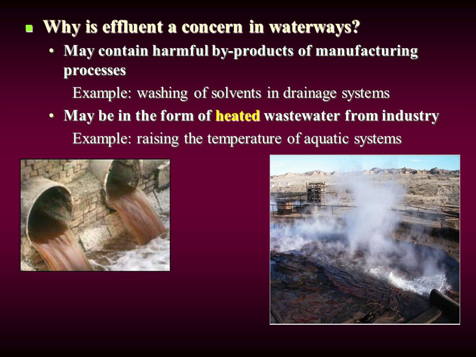 Why is effluent a concern in waterways. Why is effluent a concern in waterways.