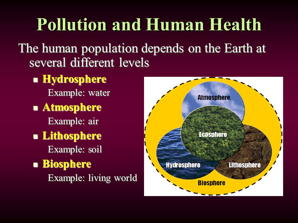 Pollution and Human Health The human population depends on the Earth at several different levels Hydrosphere Hydrosphere Example: water Atmosphere Atmosphere Example: air Lithosphere Lithosphere Example: soil Biosphere Biosphere Example: living world