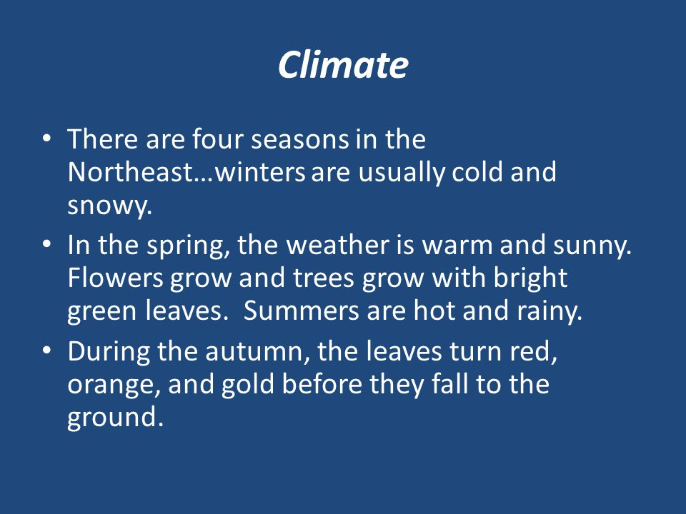 Climate There are four seasons in the Northeast…winters are usually cold and snowy.
