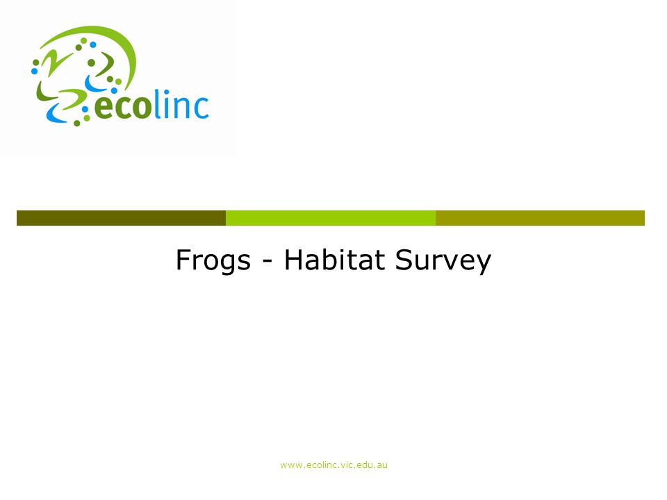 Frogs - Habitat Survey www.ecolinc.vic.edu.au