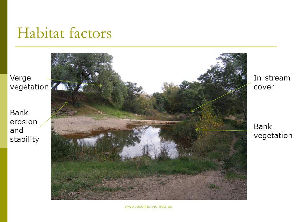 Habitat factors www.ecolinc.vic.edu.au Riffle Pool