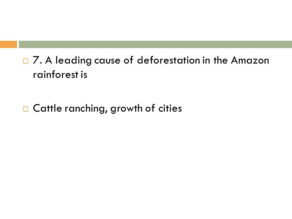 7. A leading cause of deforestation in the Amazon rainforest is  Cattle ranching, growth of cities
