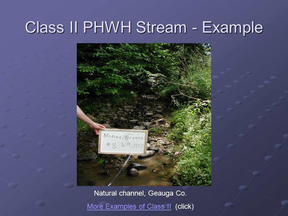 Class II PHWH Stream - Example Natural channel, Geauga Co.