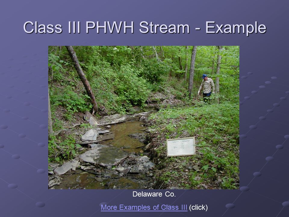 Class III PHWH Stream - Example Delaware Co.