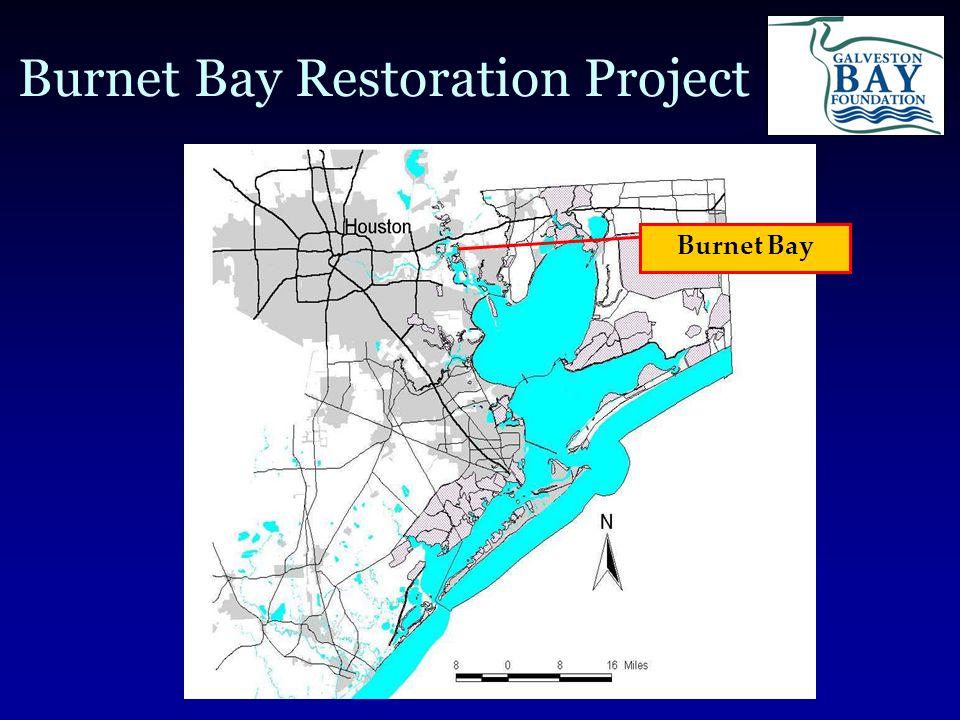 Burnet Bay Restoration Project Burnet Bay