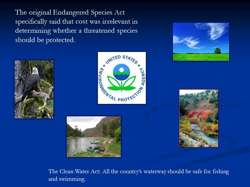 The original Endangered Species Act specifically said that cost was irrelevant in determining whether a threatened species should be protected.