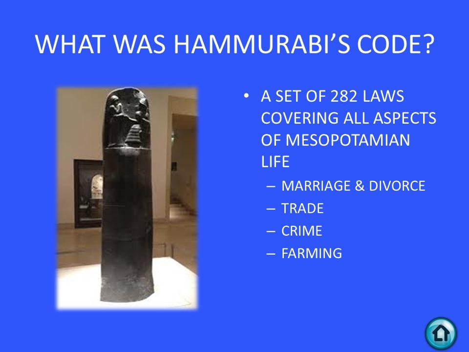 WHAT WAS HAMMURABI'S CODE.