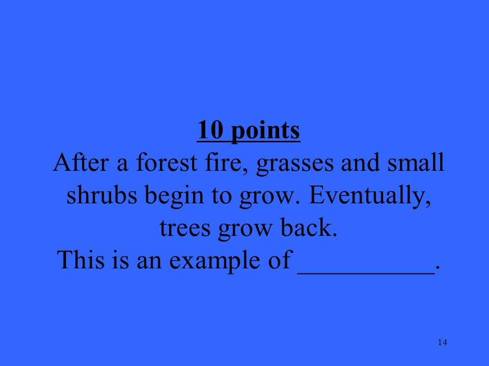 14 10 points After a forest fire, grasses and small shrubs begin to grow.