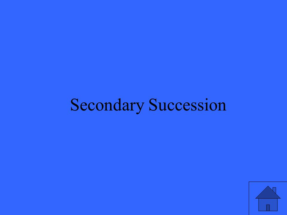 15 Secondary Succession
