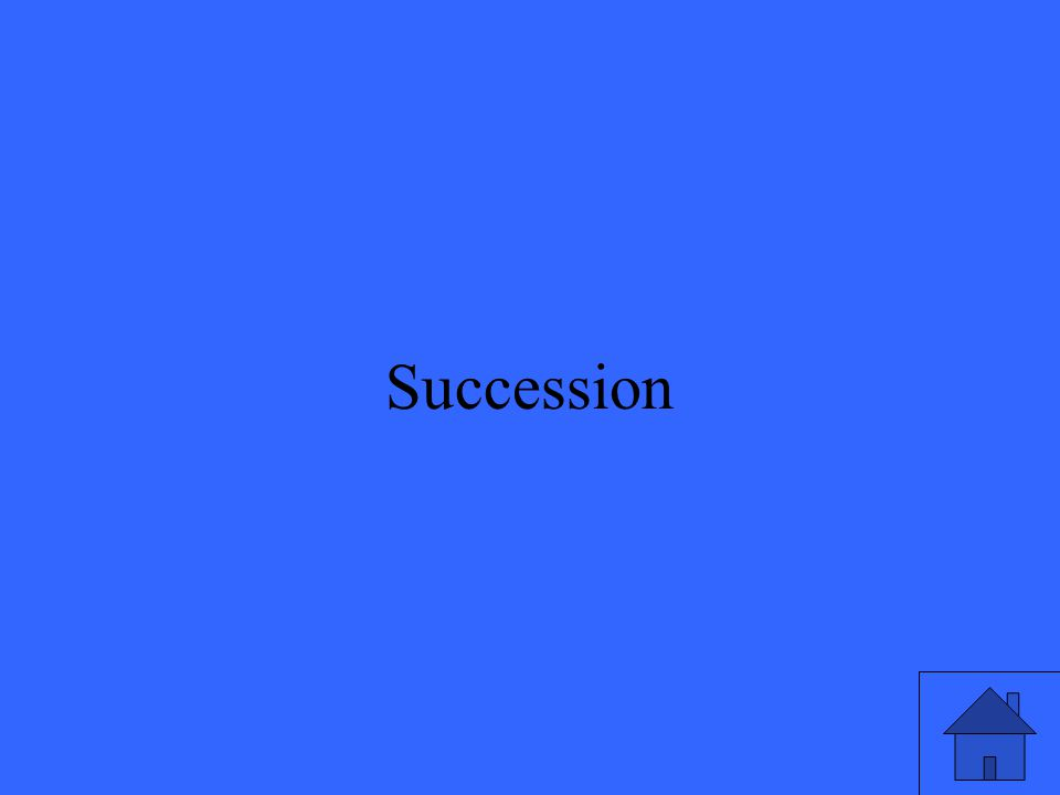 17 Succession