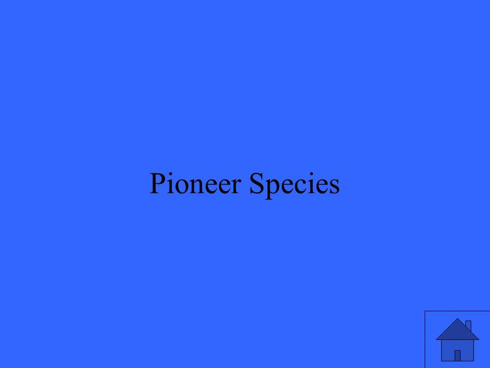19 Pioneer Species